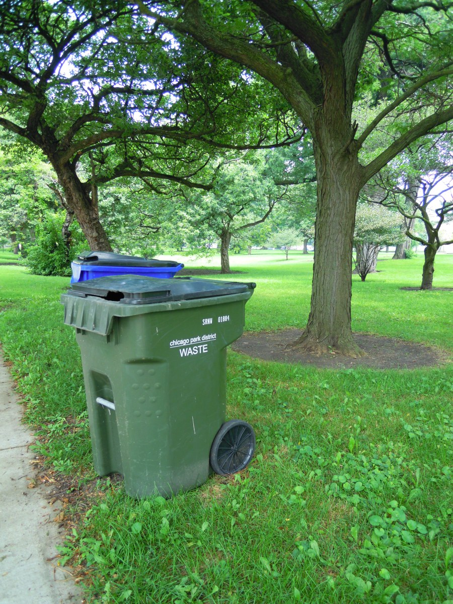 Garbage & Recycling in Hyde Park