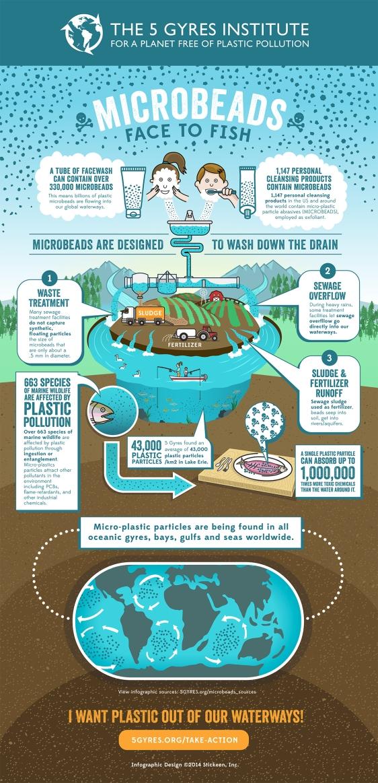 microbeads infographic